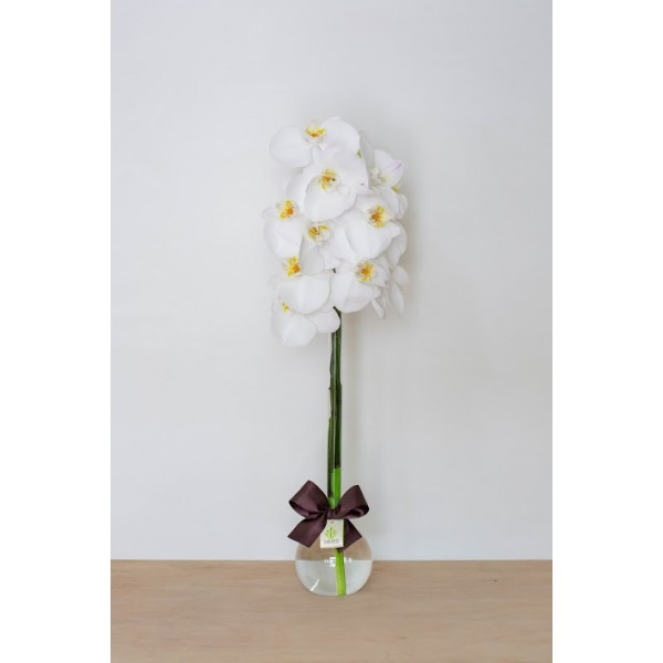 Arranjo com Orquídea Phalaenopsis Branca em Balão G