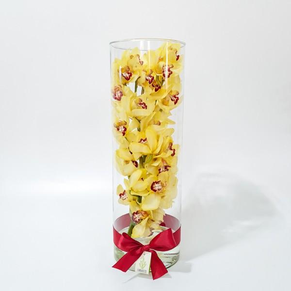 Arranjo de Orquídea Cymbidium Amarela em Cilindro de Vidro - G