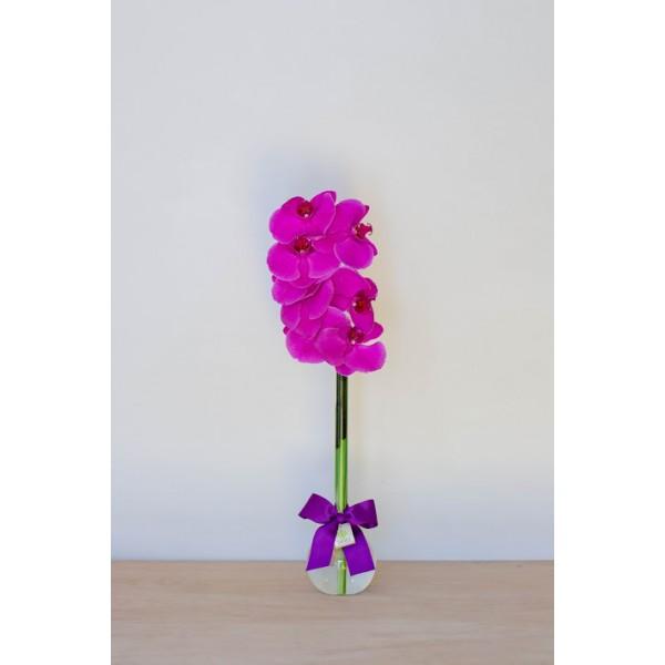 Arranjo de Orquídea Phalaenopsis Pink em Balão - G
