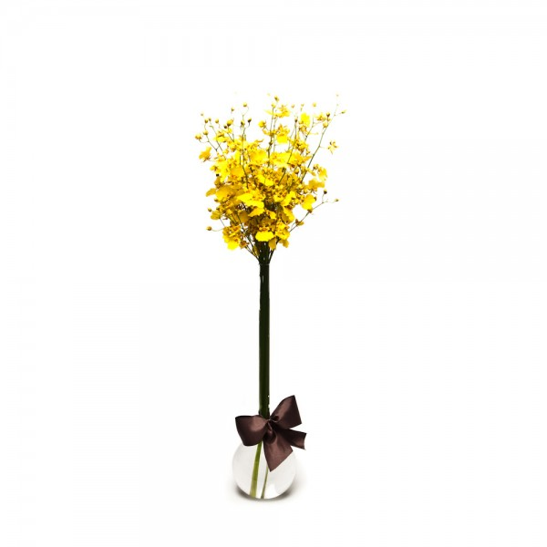 Arranjo de Orquídea Chuva de Ouro em Balão - G