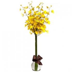 Arranjo de Orquídea Chuva de Ouro em Balão - P