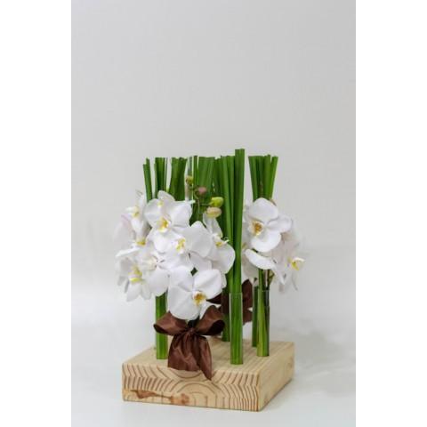 Arranjo de Orquídea Phalaenopsis Branca em Caixa de Madeira com Tubos - G