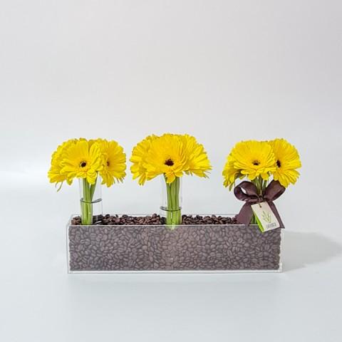 Arranjo de Gérbera Amarela em Jardineira de Acrílico com Tubo - M