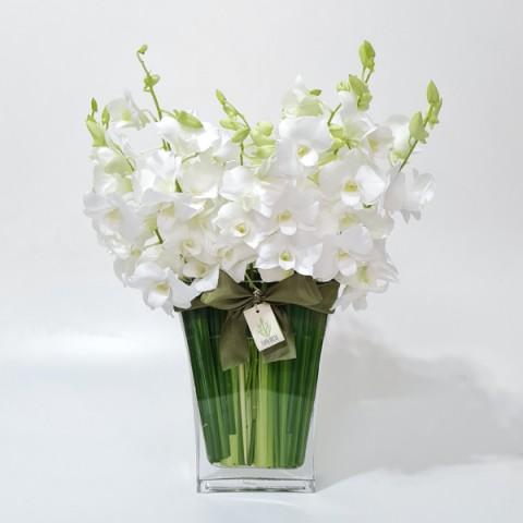 Arranjo de Orquídea Denphale Branca em Trapézio de Vidro - M