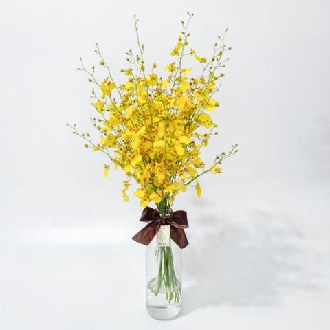 Arranjo de Orquídea Chuva de Ouro em Garrafa de Vidro - M