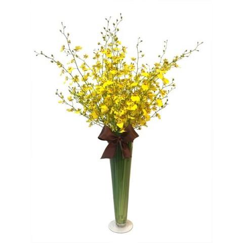 Arranjo de Orquídea Chuva de Ouro em Taça de Vidro - G