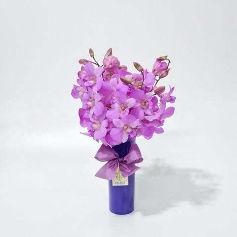 Arranjo de Orquídea Denphale Pink em Copo Acrílico Roxo - P