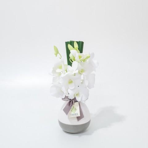 Arranjo de Orquídea Denphale Branca em Garrafinha Bicolor de Cerâmica - PP