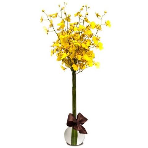 Arrranjo com Orquídea Chuva-de-Ouro em Balão P