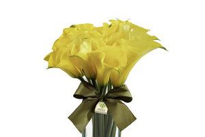 tipos de flores preferidas