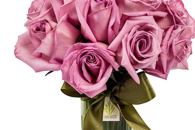 Significado da Flor da Rosa.